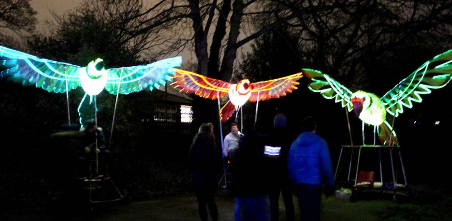 Illuminated puppet birds