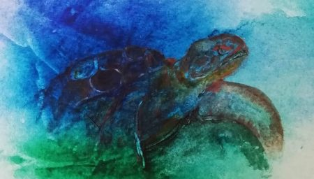 Watercolour painting of turtle