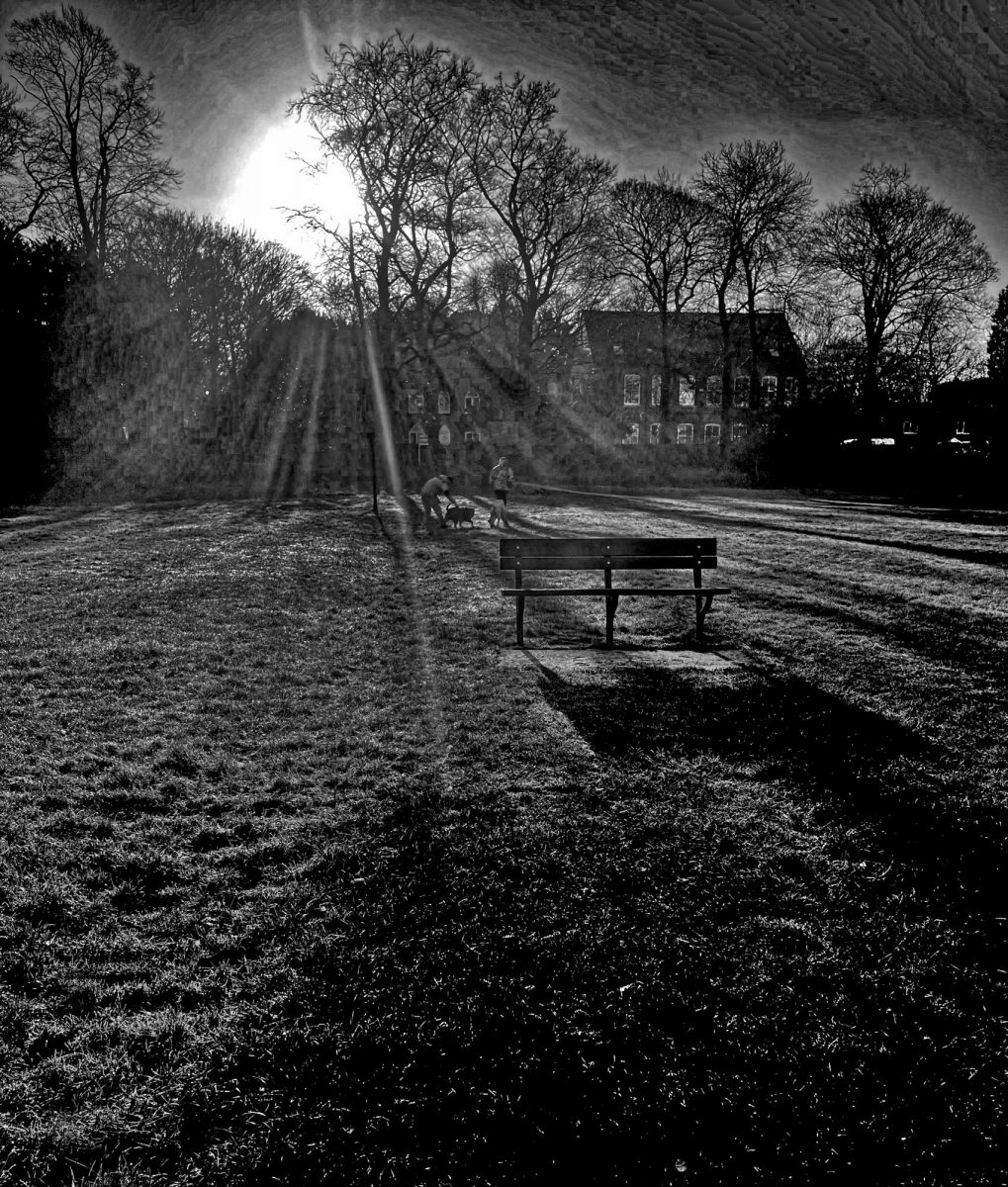 Black & White Photograph. An empty bench in a Derbyshire park.