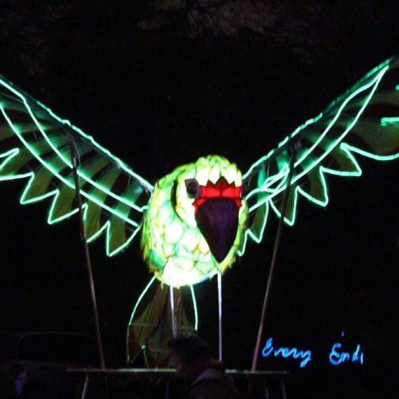 Illuminated bird puppet