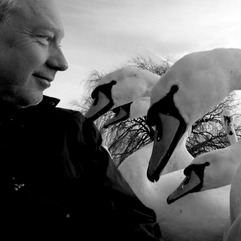 Simon Withers looking at some swans