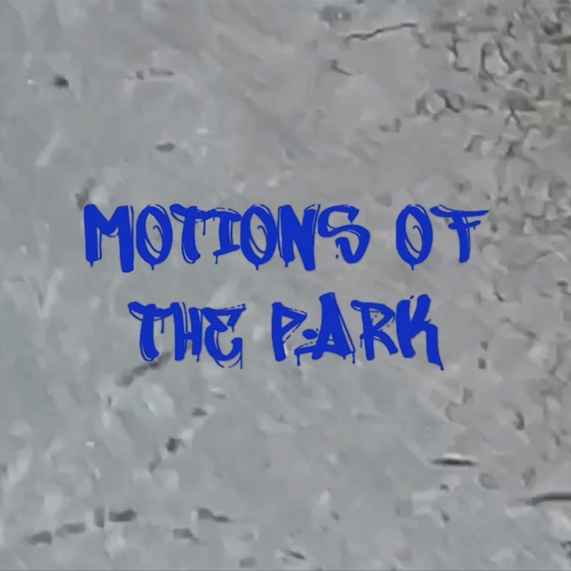 Motions of the Park